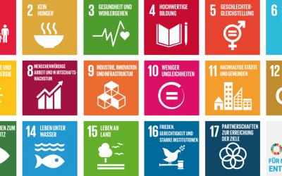 Bildung für nachhaltige Entwicklung am Stadtgymnasium