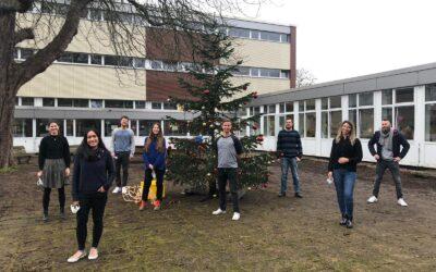 Neue Lehramtsanwärter am Stadtgymnasium