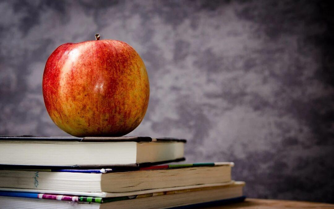 Informationen zum diesjährigen Schulbuchtausch